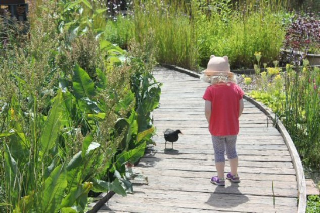 https://www.mummytravels.com/2015/08/02/family-day-out-london-wetland-centre-barnes/